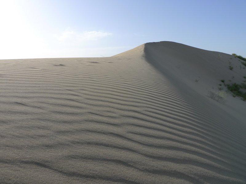 Taklaman Desert3.jpg