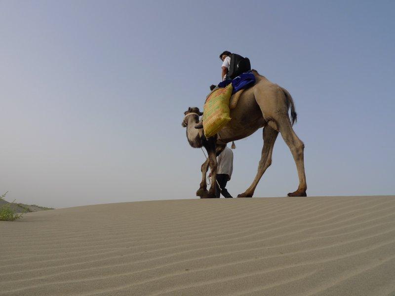 Taklaman Desert6.jpg
