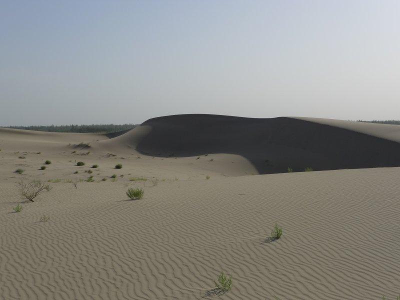 Taklaman Desert7.jpg