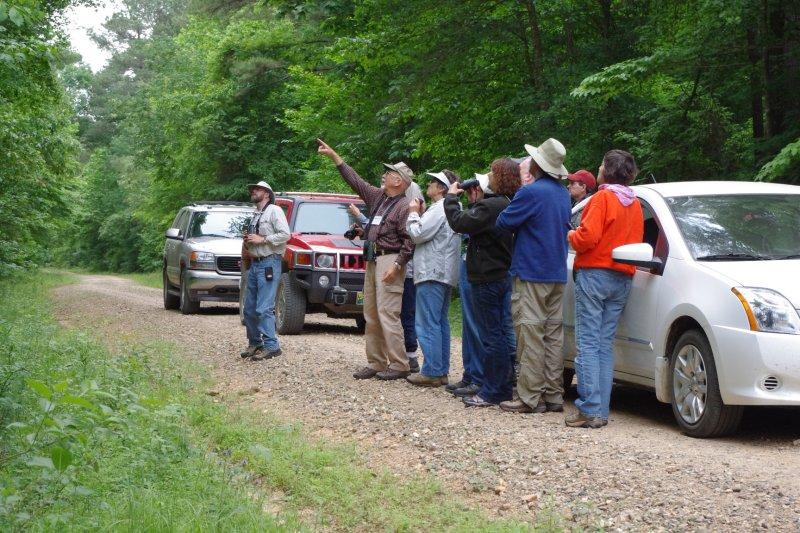 Birding Tour Group