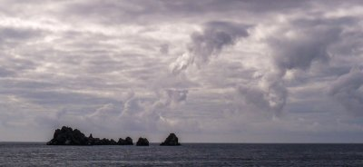 The Devils Crown, off Punta Cormorant, Floreana Island, The Galapagos, Ecuador, 2012