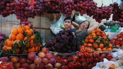 Fruitful frame, Ben Tre, Vietnam, 2008