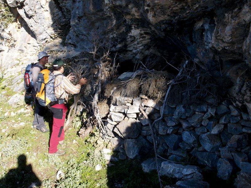 CIRCULAR AL TORRECILLA: Pto Corona - Paso del Cristiano - Pilar de Tolox - Los Oreganeros 133321905