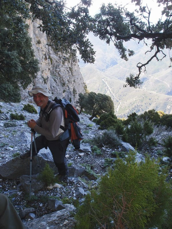 CIRCULAR AL TORRECILLA: Pto Corona - Paso del Cristiano - Pilar de Tolox - Los Oreganeros 133321907