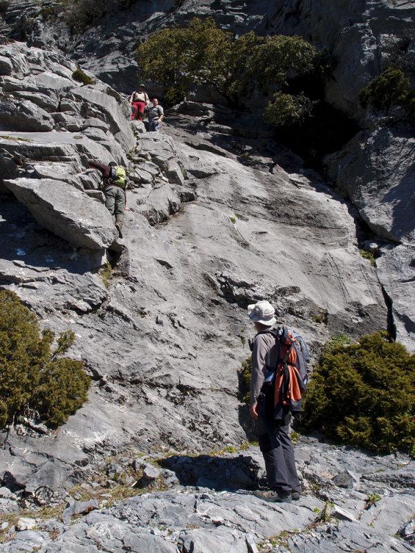 CIRCULAR AL TORRECILLA: Pto Corona - Paso del Cristiano - Pilar de Tolox - Los Oreganeros 133321908