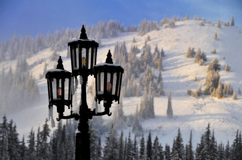 8th Street Lamps