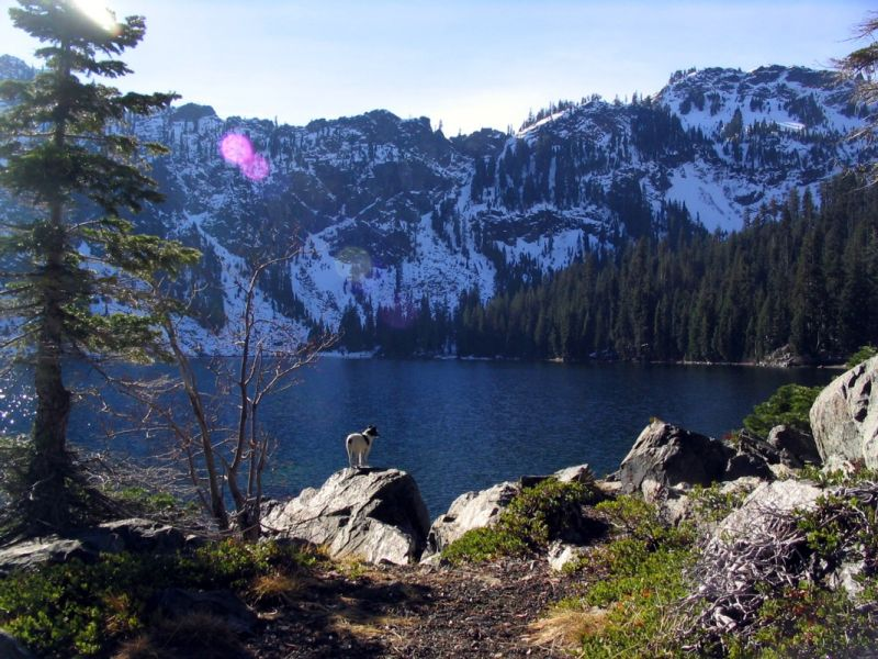 Cliff Lake and Pika
