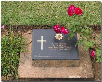 War Cemetery 6