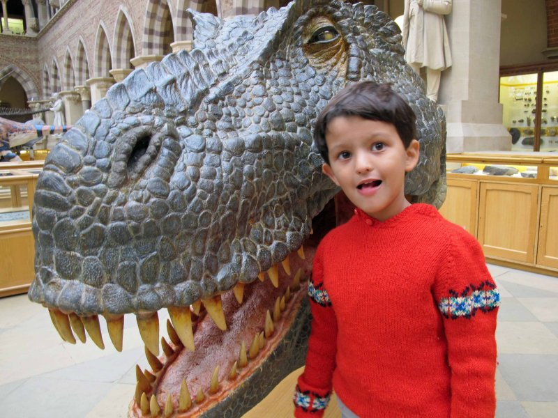 T-Rex reconstruction at the Pitt Rivers Museum