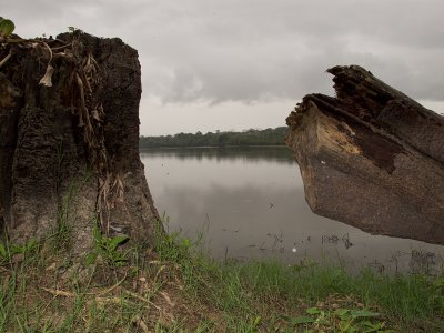 Iquitos_00032.jpg