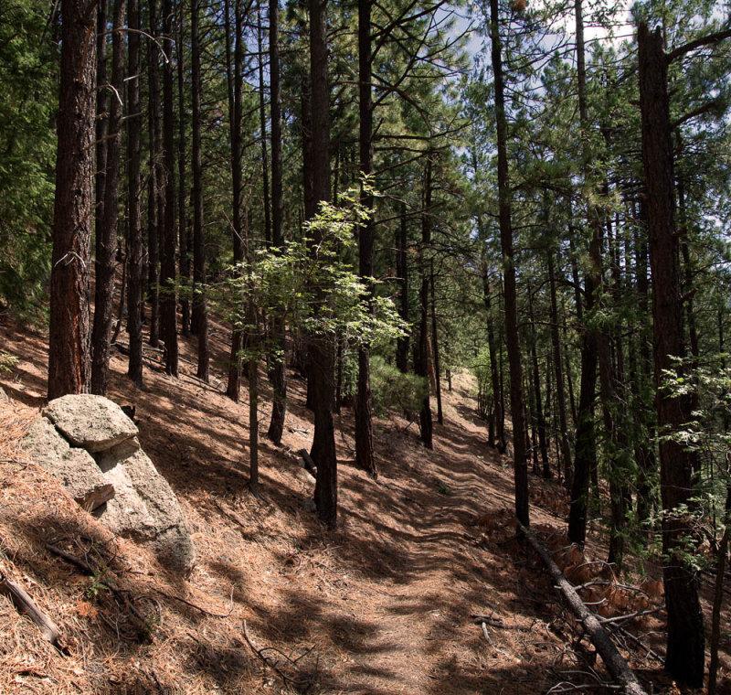Redstone Trail