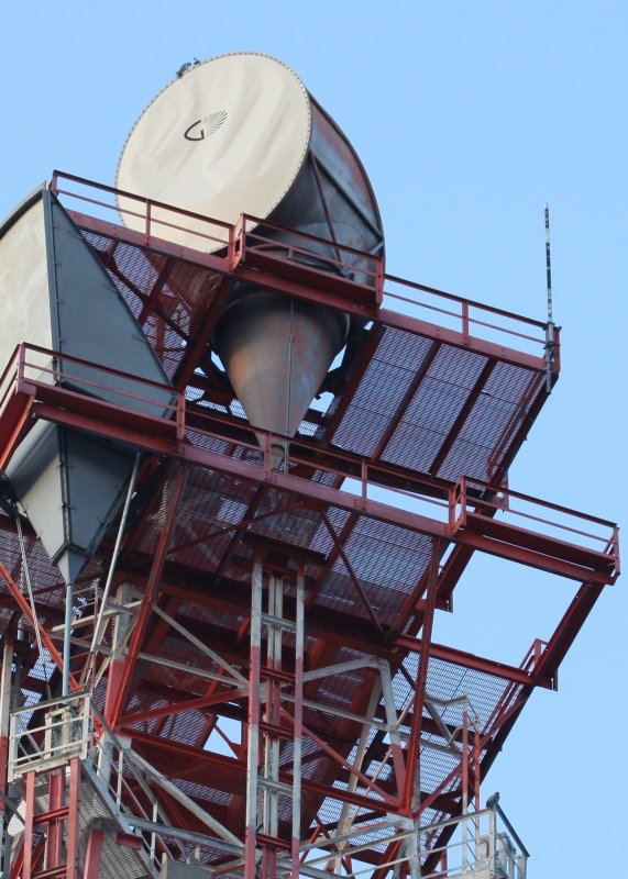 One atop cell tower; one perched lower right area