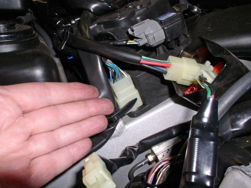 Front 13 pin plug