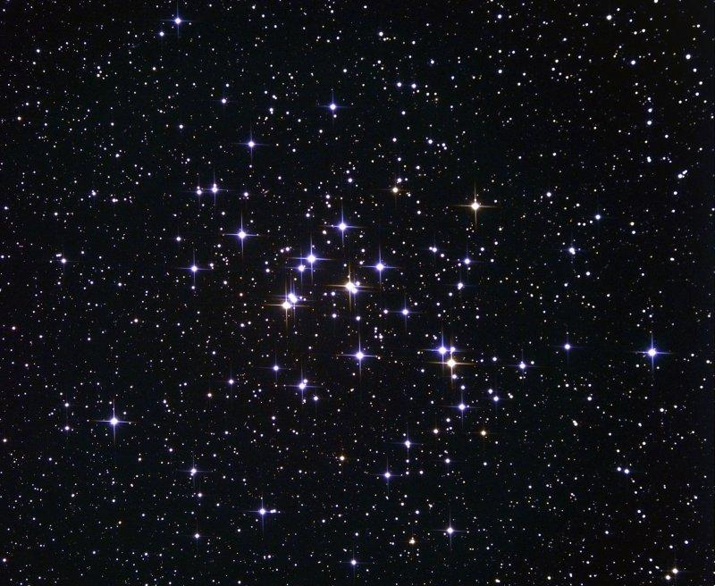 M 44 , lAmas de la Crèche - Beehive Cluster