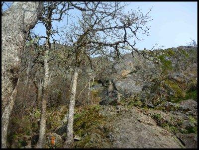 Mt. Finlayson Climb 5