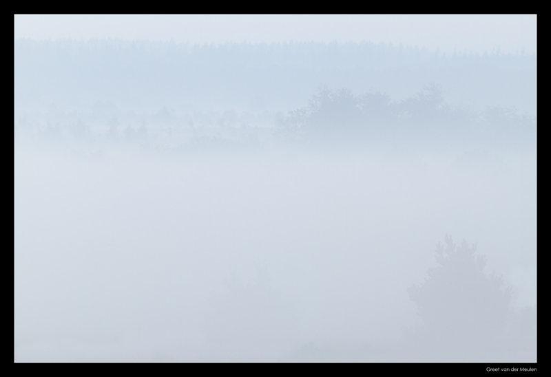 4312 Holterberg mist before sunrise