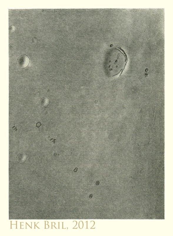 Fig 22 - Marius
