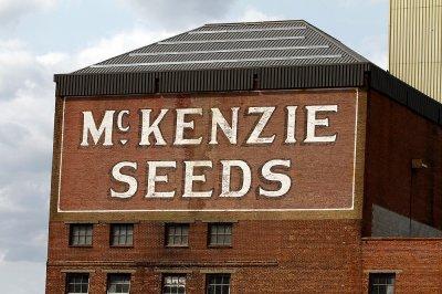 McKenzie Seeds...Brandon