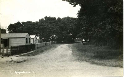Leysdown Nut Ave