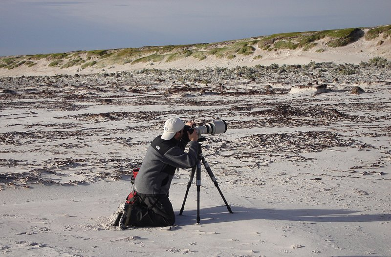 Another day at the office - East Falkland Island.
