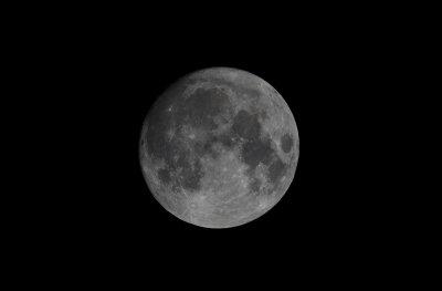 Luna Lunera, Cascabelera...
