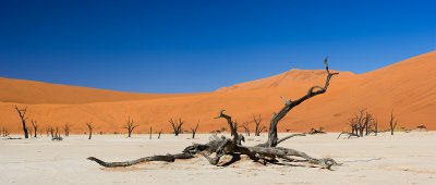 DeadValey, Desierto de Namibia