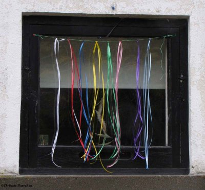 Ribbons for birds