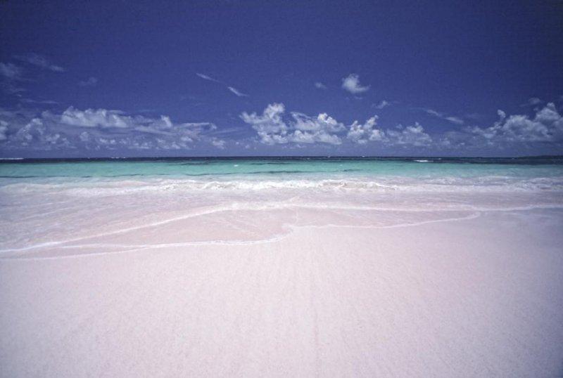 Beach, Eleuthera, Bahamas