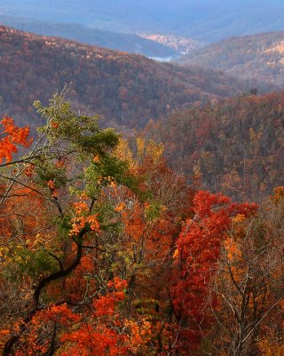 83252 late fall color highway 43 web.jpg