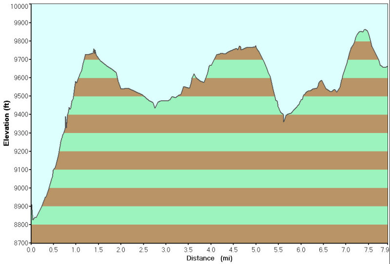 Elevation Profile for  Day 2