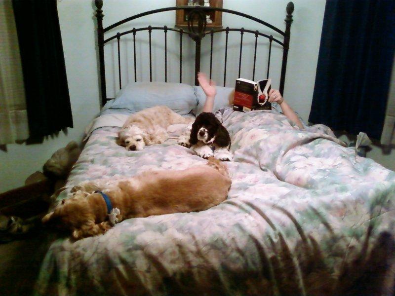 It must be near bedtime