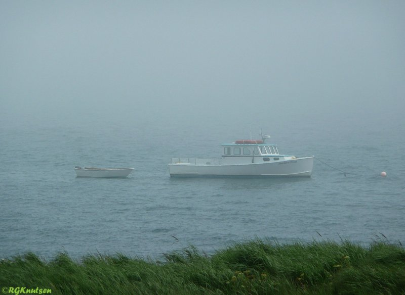 Our means of transport to/from Machias Seal island