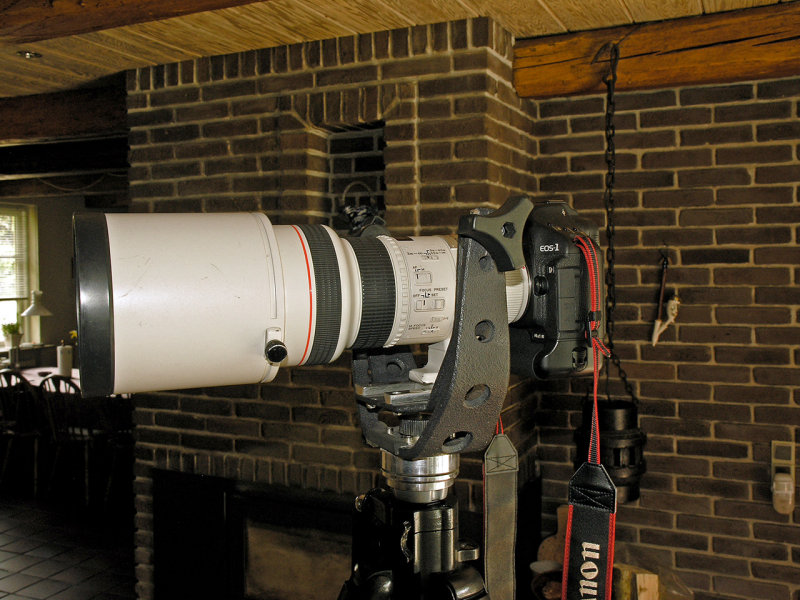 Gimbal with Canon 300mm