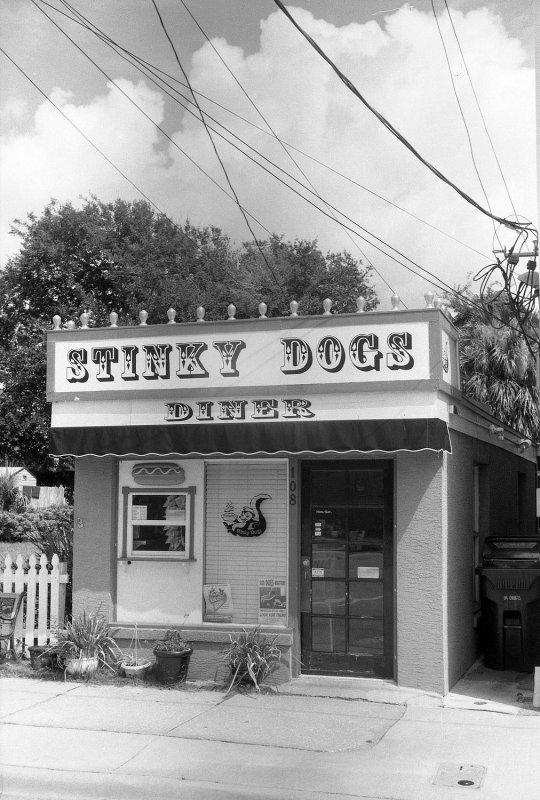 Stinky Dogs