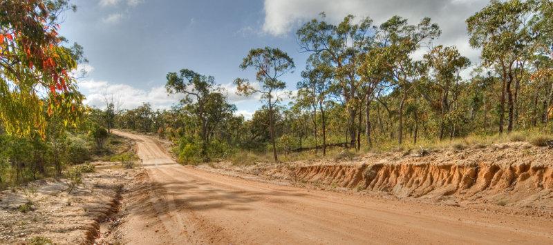 Road in heathland _DSC5406