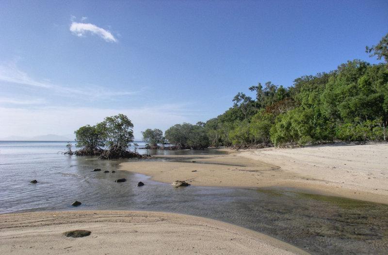 Beach, ocean, mangroves IMGP0683