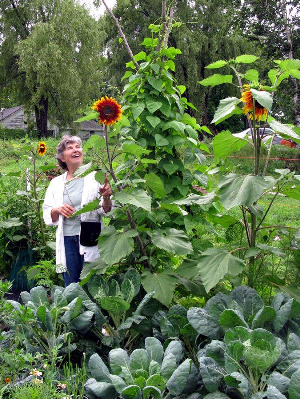 Annis Garden