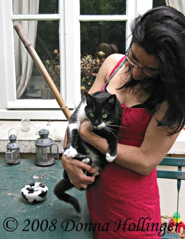 Milka the cat