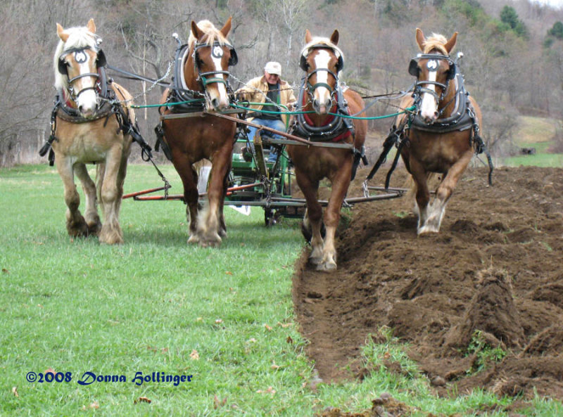Finer Points of Plowing