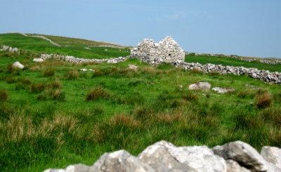 Cottage ruin in the Burren