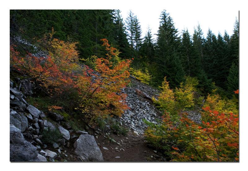 Mirror Lake Trail 4