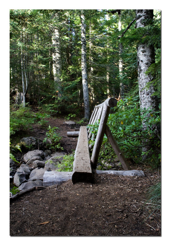 Mirror Lake Trail 5