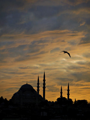 Suleymaniye Mosque from the Golden Horn, Istanbul, Turkey, 2009