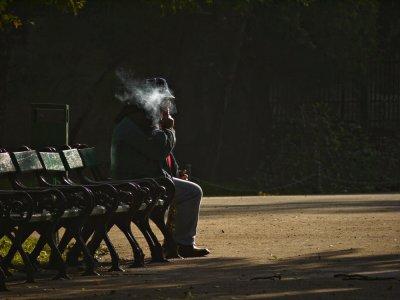Smoke, Cismigiu Garden, Bucharest, Romania, 2009