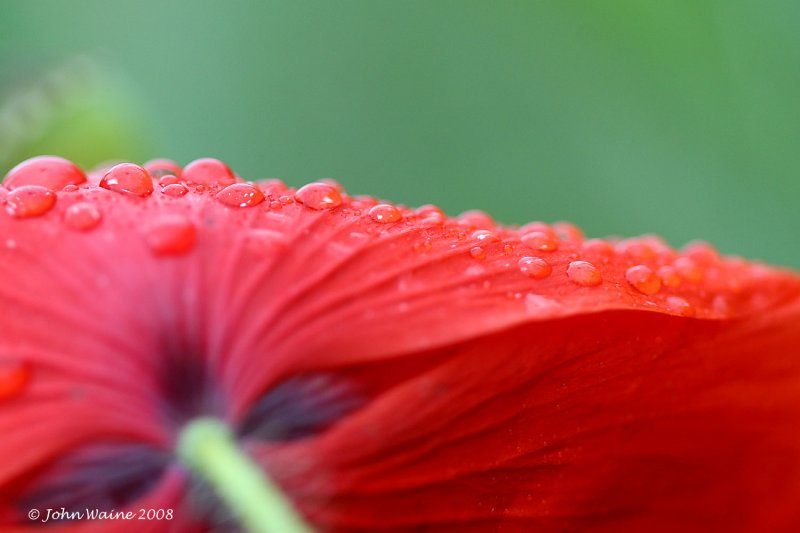 More droplets