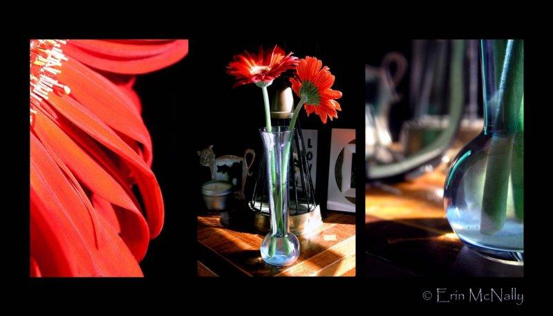 Red Flower & Vase