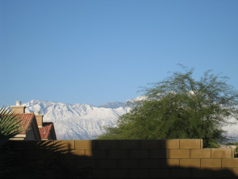 (Backyard in Palm Desert)