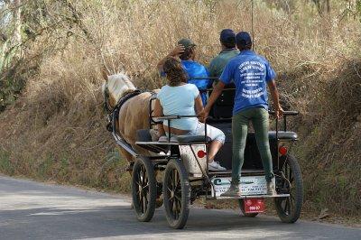 Passeio de Carroça // A Cart journey // Promenade en Charrette à Cheval