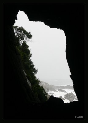 View OfThe Caveman