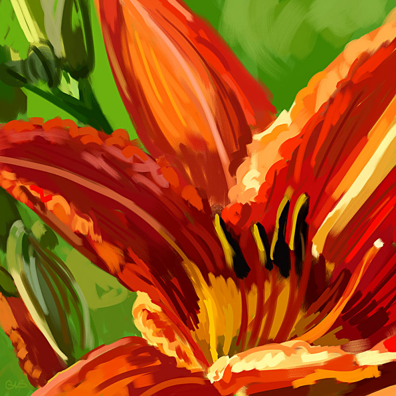 One Day Lily